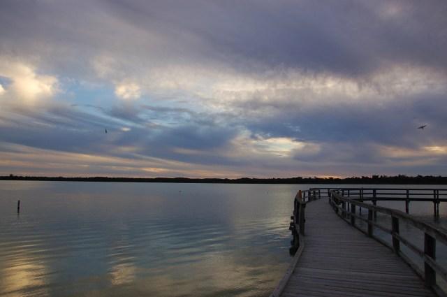 Lake Clifton thrombolites Western Australia | Extraordinary Days