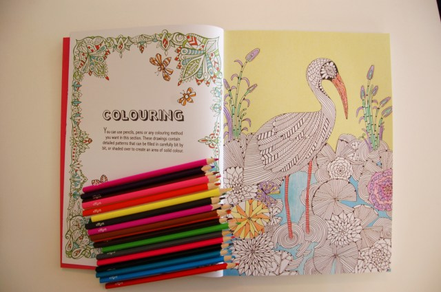 Colouring books for adults | Extraordinary Days